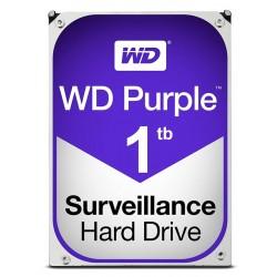 HD1000-PURPLE HARD DISK WD 1TB